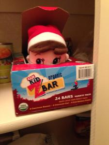 Jerry Jingle, shown above, is now in protective custody after blowing the cover off Santa's degrading Elf on the Shelf program.